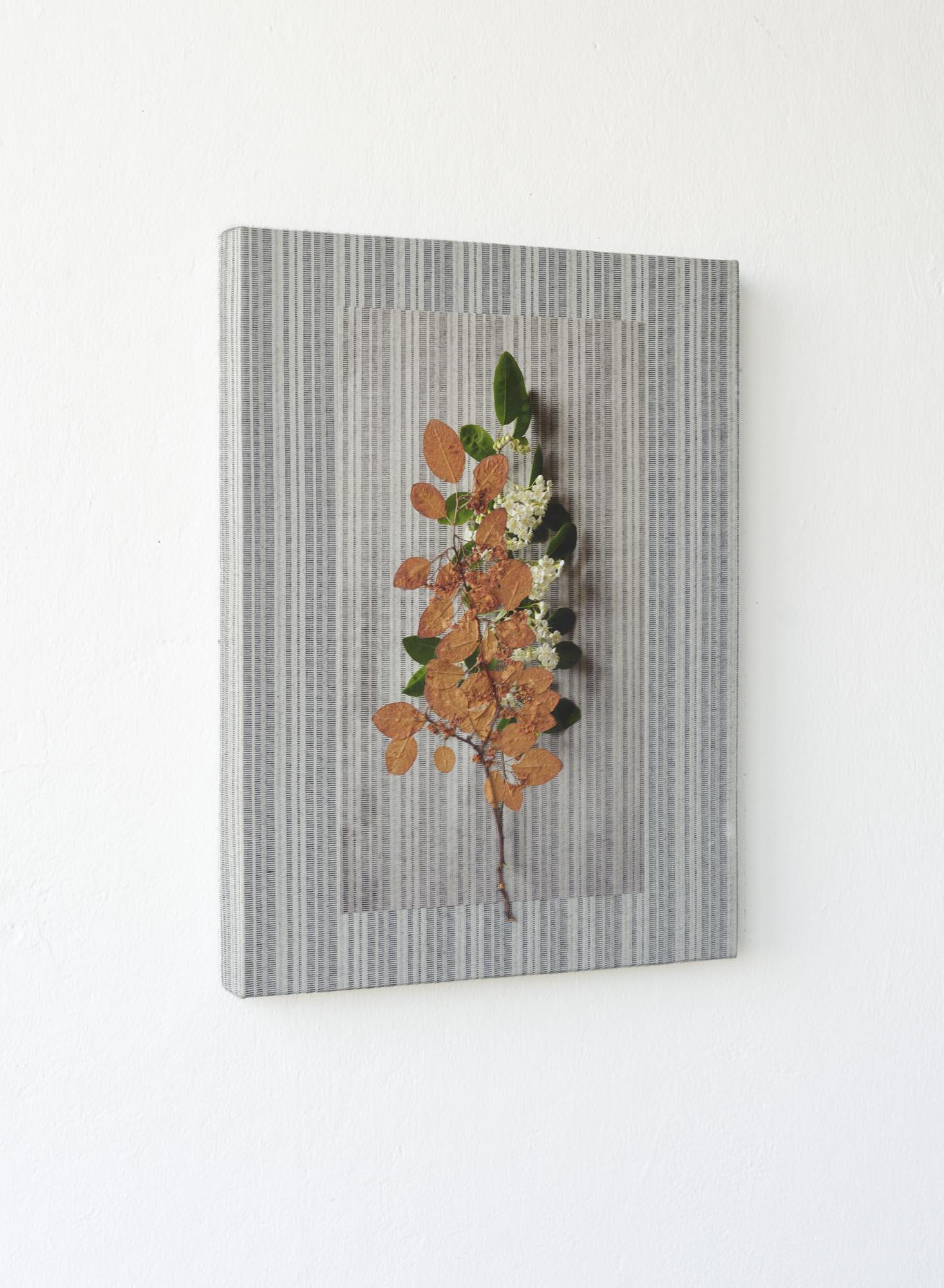 Dried plant, art work of Ilia beckmann