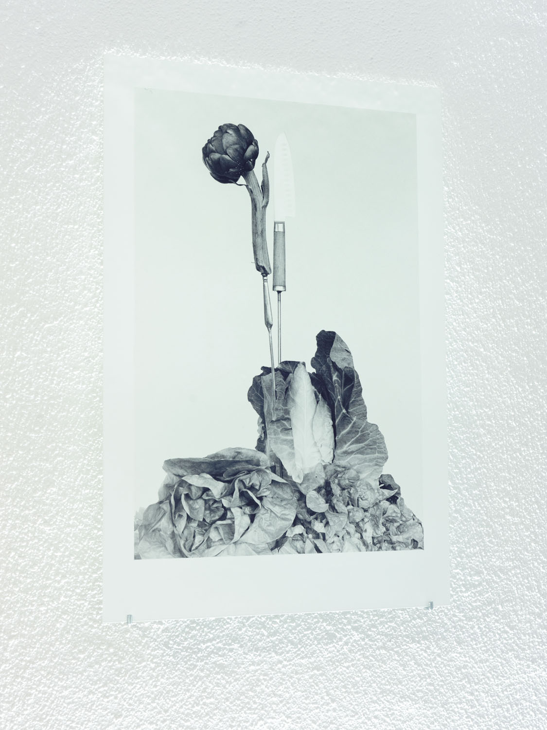 Stiel-Leben, 2019-2020, Silver gelatin on silk paper and glass, 80 x 60 cm. The translucent object is illuminated with a fluorescent light tube from above.