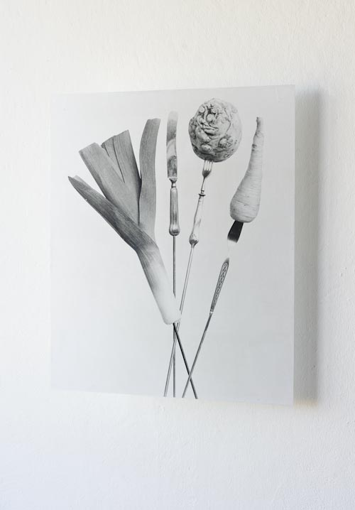 "LifeOnStake-exhibitionview2. This black-and-white fine art print is 50x60 cm large and made on a glass plate which was coated with silver gelatin. the object is hanging from the ceiling, there is a plant in the backdrop. It's from the series ""life on stake"", 2019. An international panel of health scientists and climate researchers has prescribed a new diet for the planet: more vegetables, less meat, fresh fruit, wholegrains and pulses, give up sugar and waste less!  And if 200 nations accept the diagnosis and follow doctor's orders, tomorrow's farmers may be able to feed 10 billion people comfortably by 2050, help contain climate change, and prevent 11 million premature deaths per year."