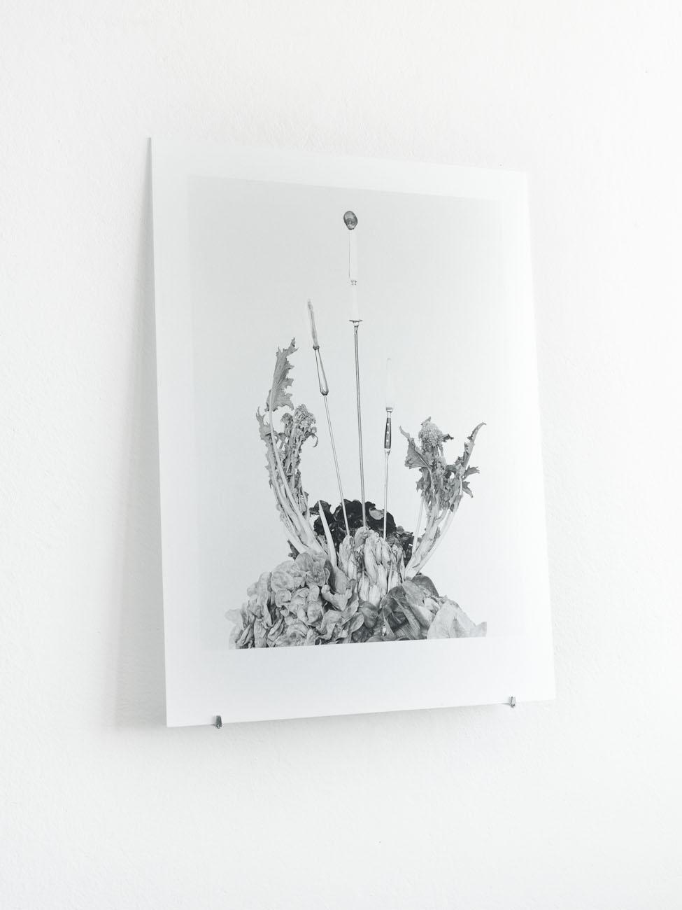 Silbergelatine auf Glas und Seidenpapier, 60 x 80 cm.