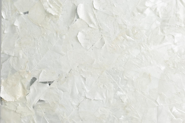 IB07063-IliaBeckmann_Eiszeit